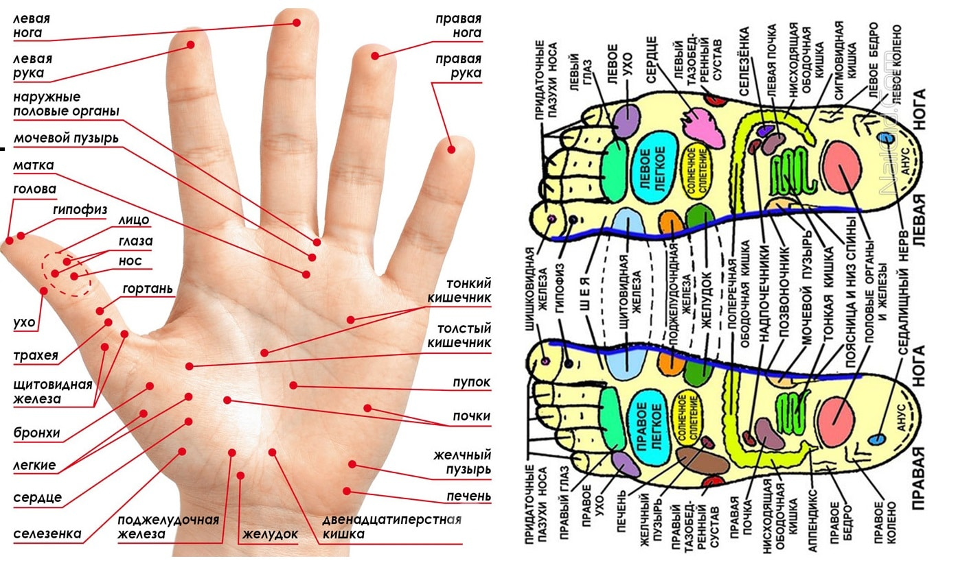 Акупунктура руки для похудения